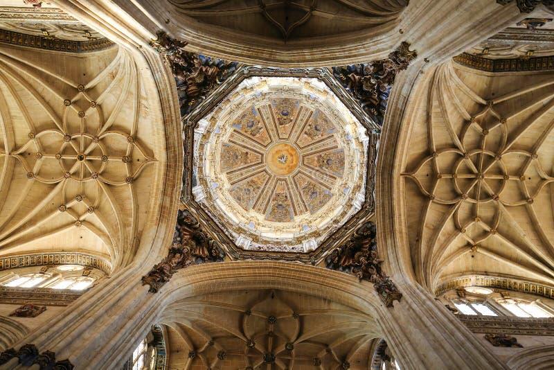 Nieuwe Kathedraal van Salamanca royalty-vrije stock fotografie
