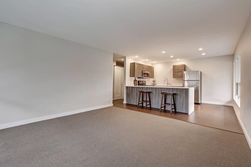 Nieuwe moderne flat met grijze keuken stock foto