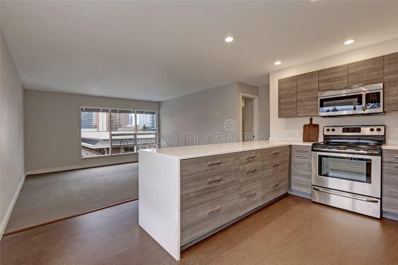 Nieuwe moderne flat met grijze keuken royalty-vrije stock foto's