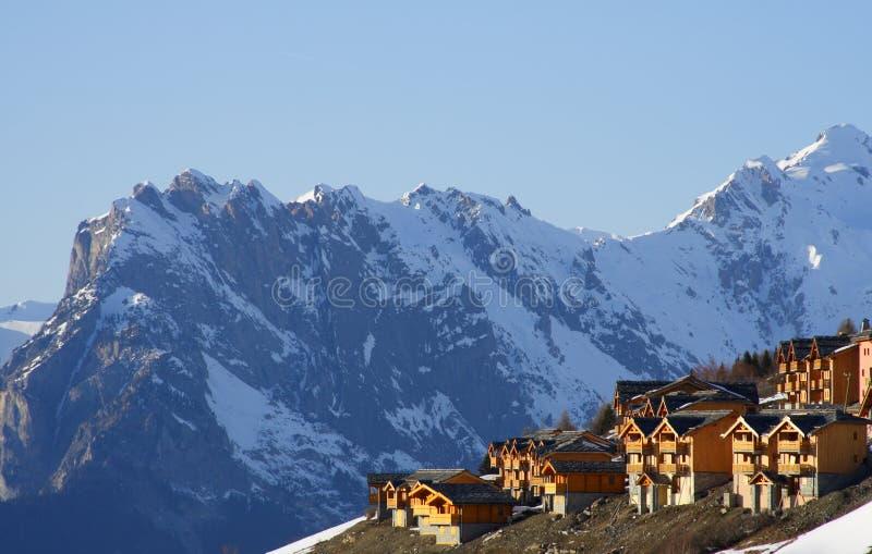 Nieuwe skitoevlucht in savooiekool stock afbeelding