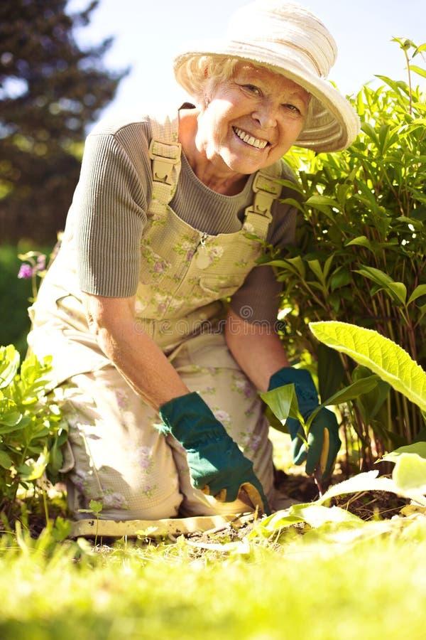 Nieuwe toevoeging aan de tuin royalty-vrije stock fotografie