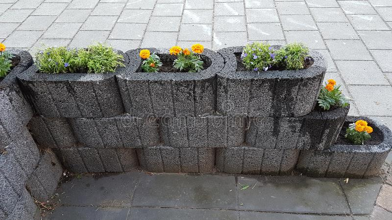 Nieuwe tuin met bloemen royalty-vrije stock fotografie