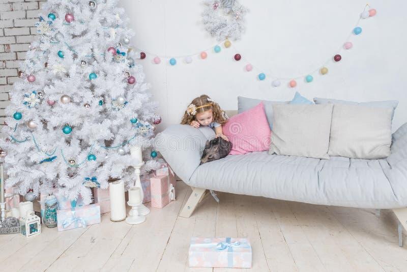 Nieuwjaar en Kerstmisverhaal over een klein meisje in feestelijke kleding en minivarken Weinig Varkenssymbool van 2019 zwart royalty-vrije stock foto