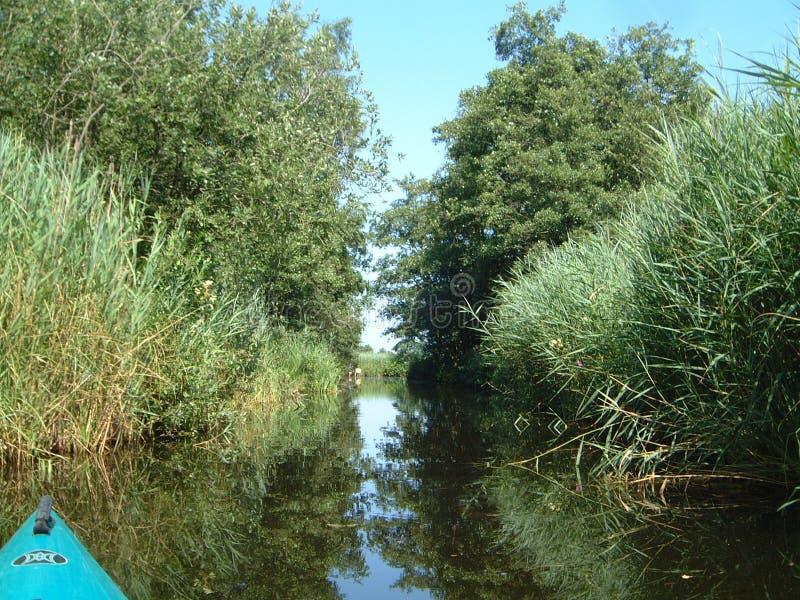 nieuwkoop holland jeziora. zdjęcia stock