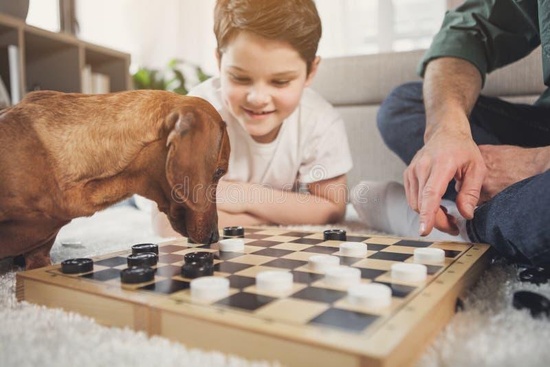 Nieuwsgierig hond het snuiven schaakbord dichtbij eigenaars stock foto