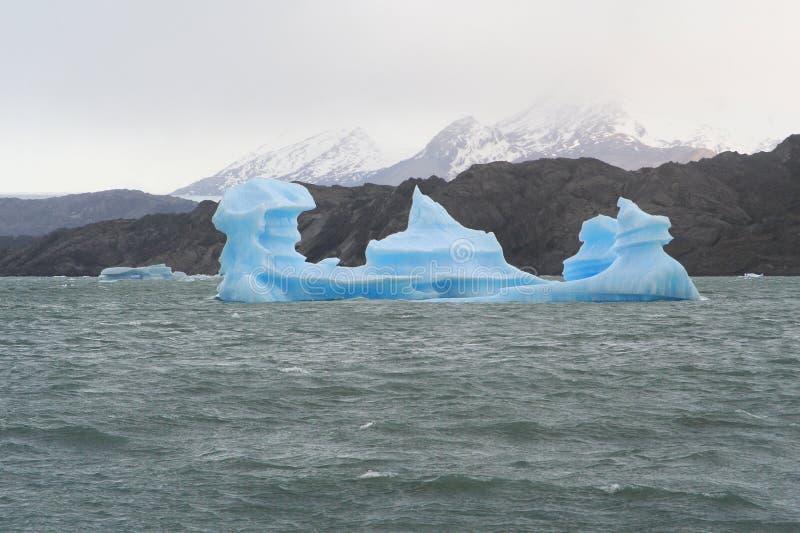 Nieuwsgierige ijsberg stock fotografie