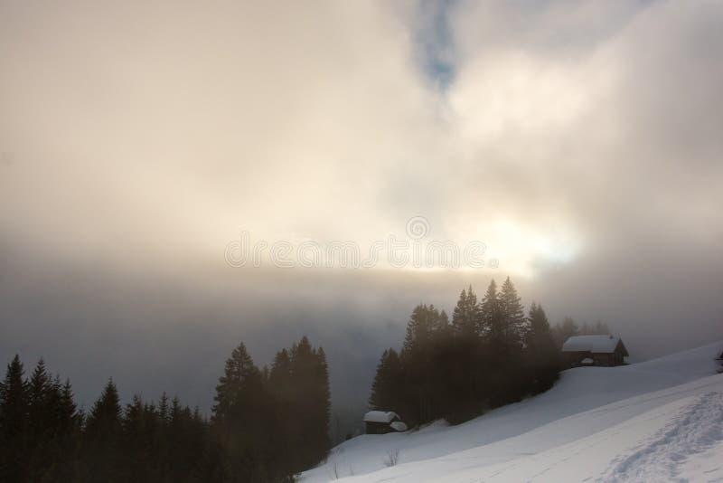 Nieva y el bosque oscuro en las montañas imagen de archivo