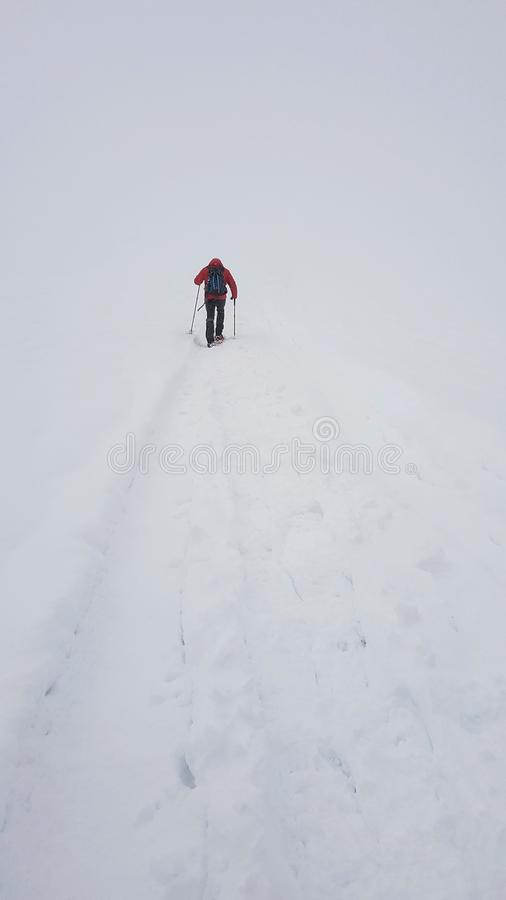 Nieve arkivfoton