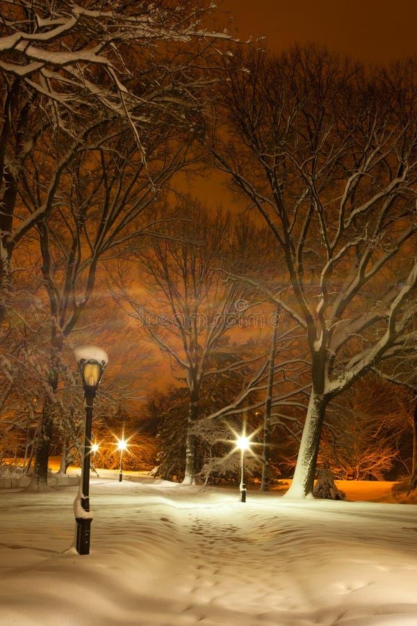 Nieve de Central Park fotos de archivo libres de regalías