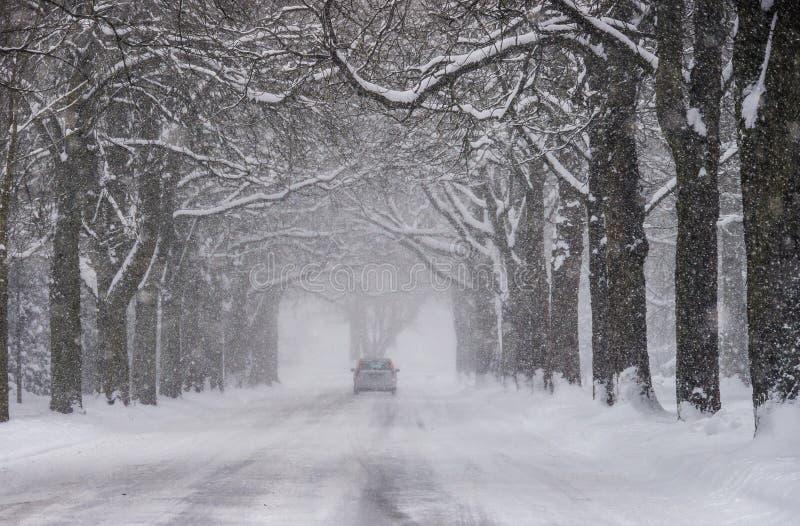 Nieve del efecto del lago en Hamburgo imagen de archivo libre de regalías