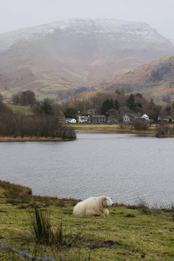 Nieve de Inglaterra del viaje del distrito del lago imagenes de archivo