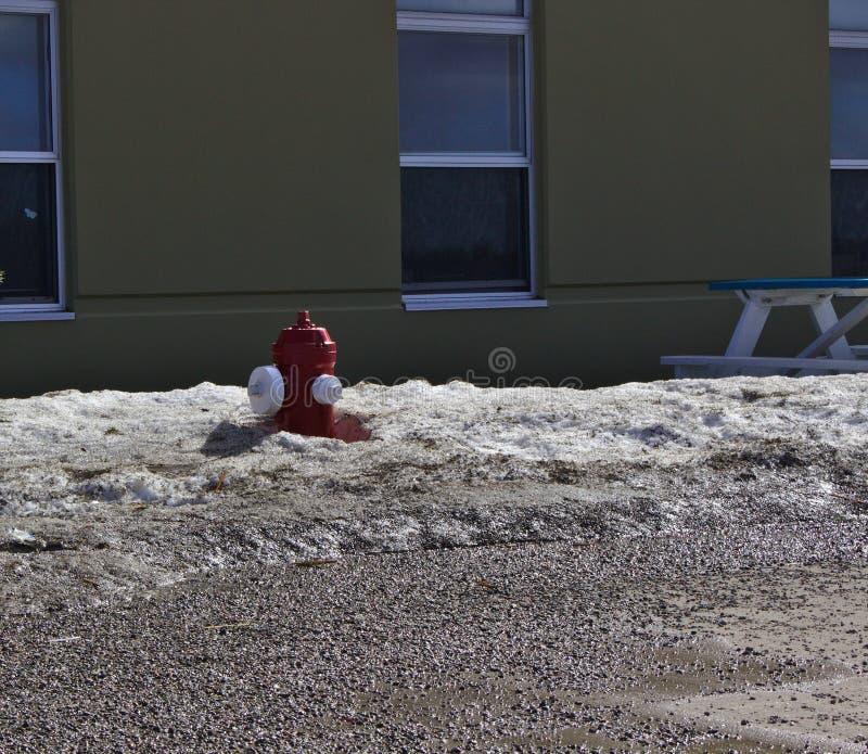 Nieve de la boca de incendios imagen de archivo libre de regalías