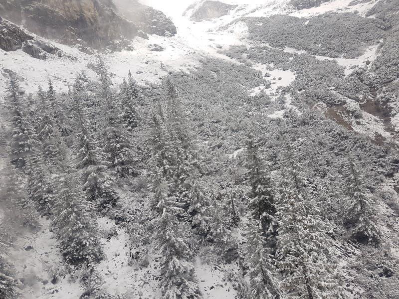 Nieve de la montaña montan@as imágenes de archivo libres de regalías