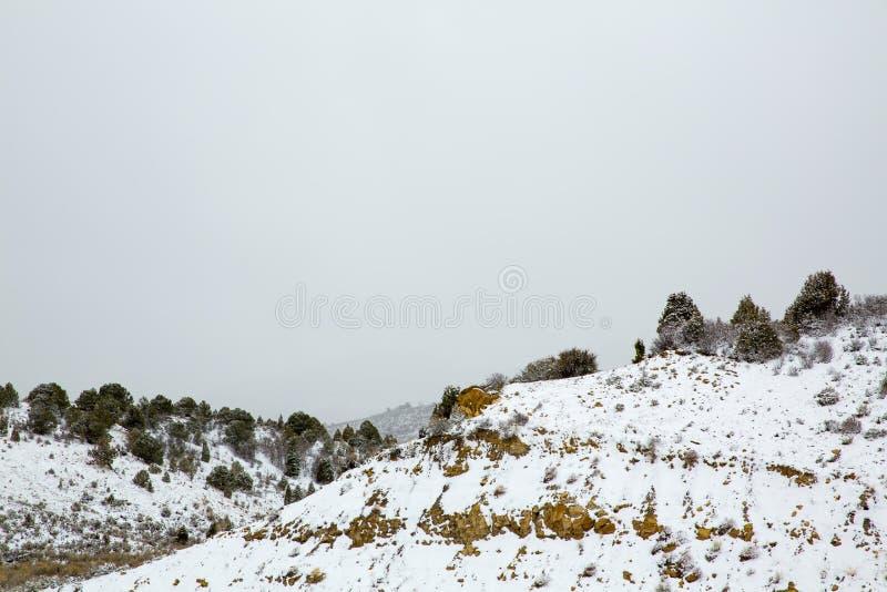 Nieve de la primavera de Nevada los E.E.U.U. en las montañas fotos de archivo libres de regalías