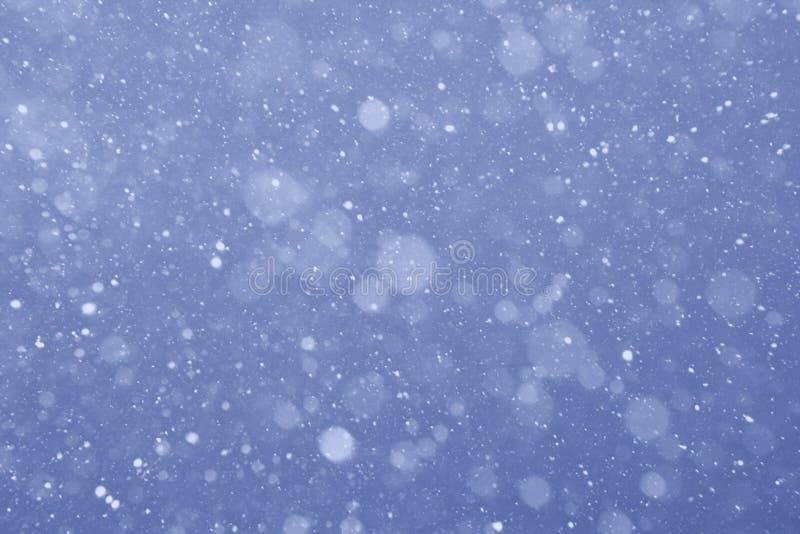 Nieve de la tarde fotografía de archivo libre de regalías