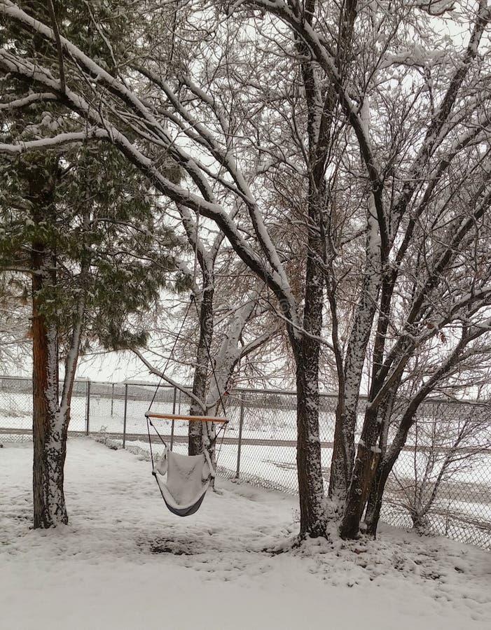 Nieve del invierno del desierto imagen de archivo