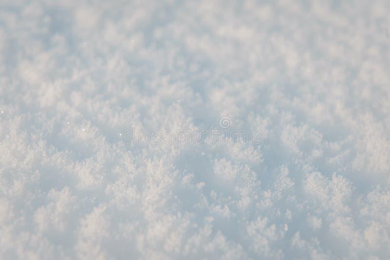 Nieve del invierno Textura fresca del fondo de la nieve Textura del blanco nevado Copos de nieve imágenes de archivo libres de regalías
