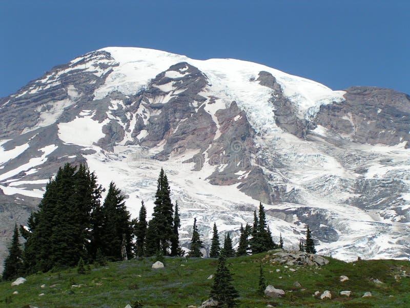 Nieve del Mt. Ranier en verano imagen de archivo