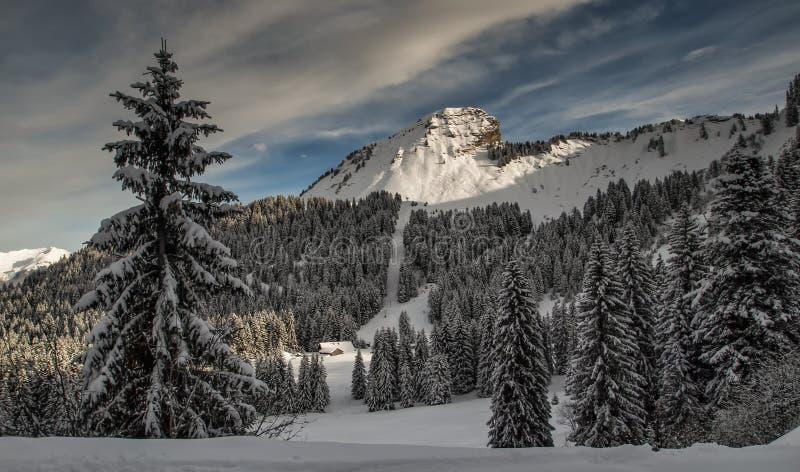 Nieve en el top de una montaña fotografía de archivo