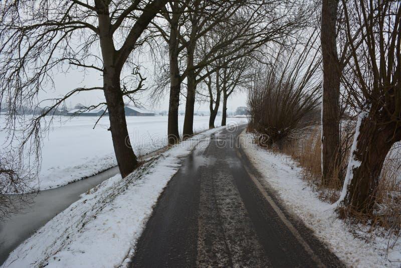 Nieve en febrero foto de archivo