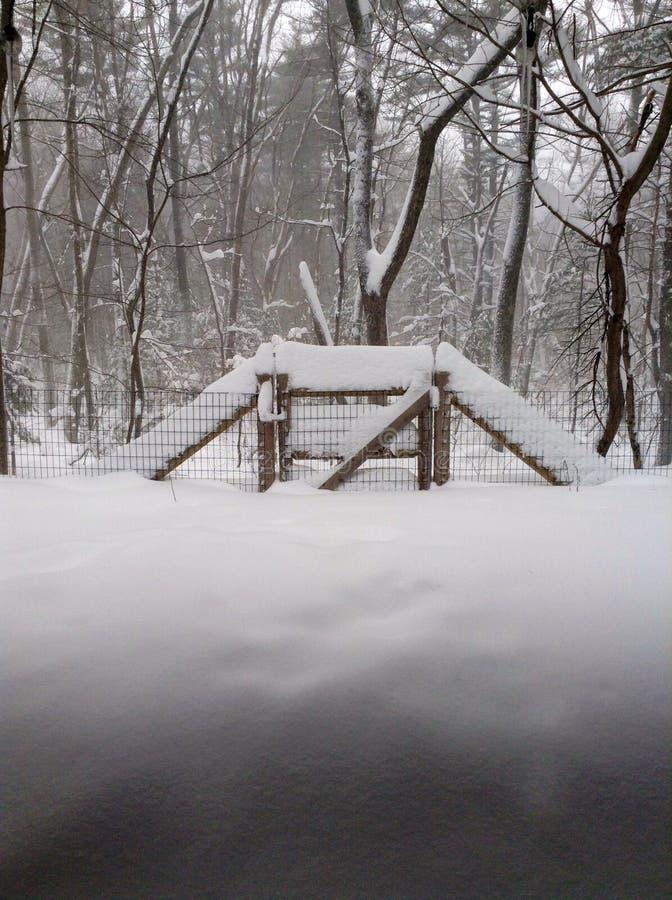 Nieve en la cerca del bosque imagen de archivo