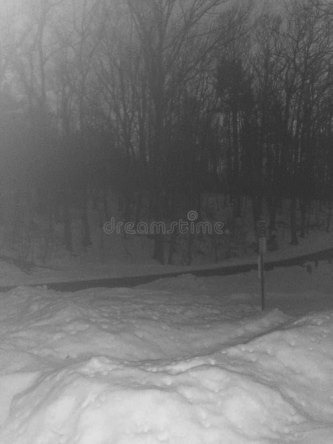 Nieve en la noche fotografía de archivo libre de regalías