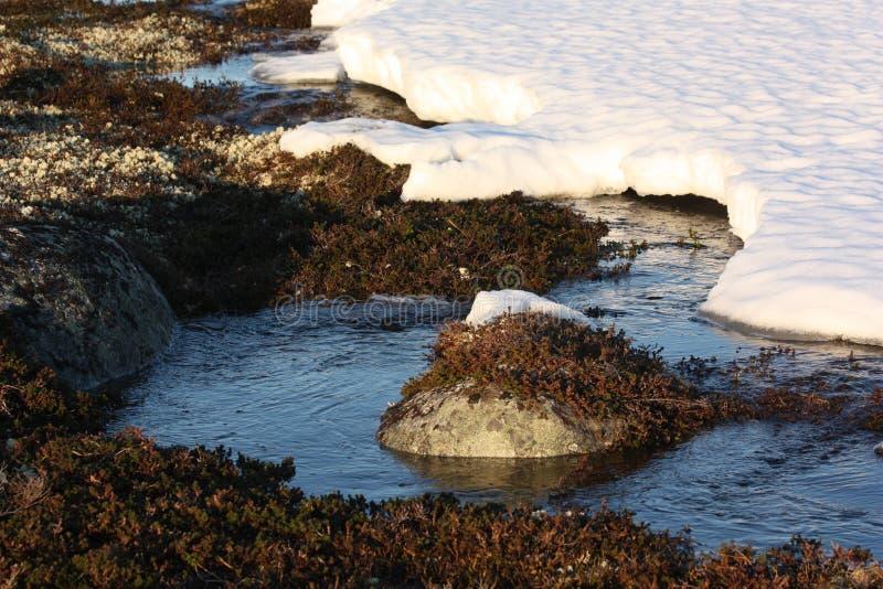 Nieve en la primavera la tundra imágenes de archivo libres de regalías