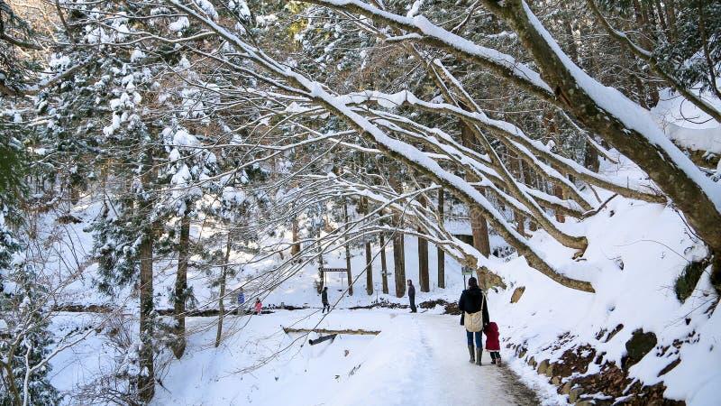 Nieve en montañas de Japón fotos de archivo libres de regalías