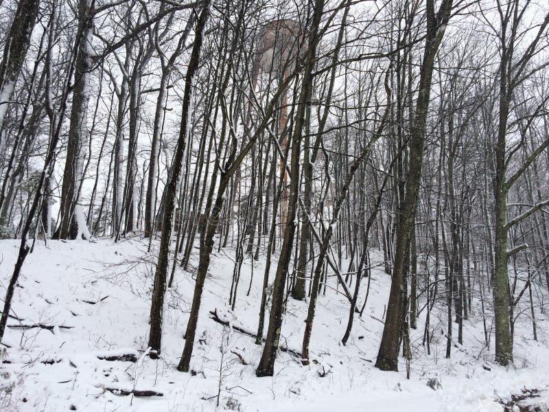 Nieve en primavera imagen de archivo libre de regalías