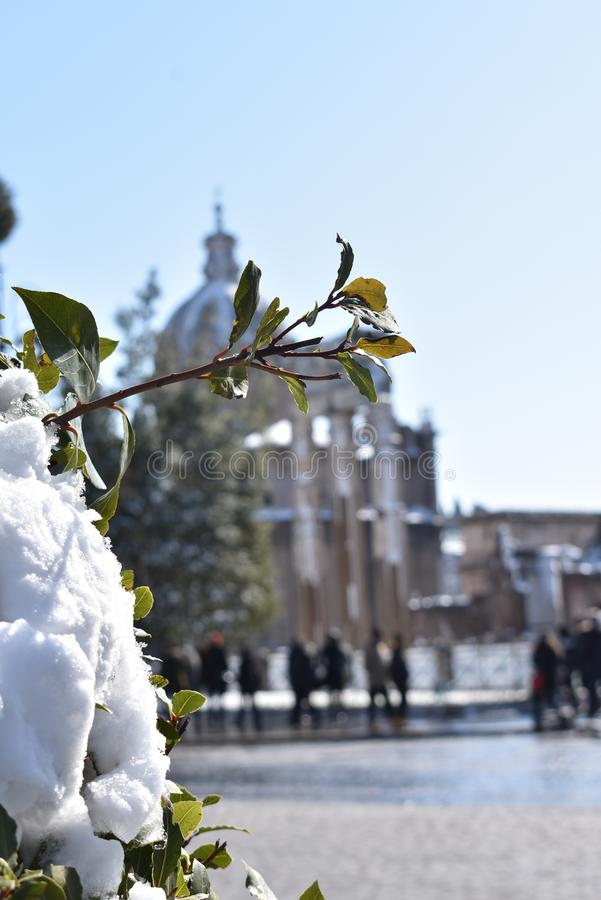Nieve en Roma fotos de archivo libres de regalías