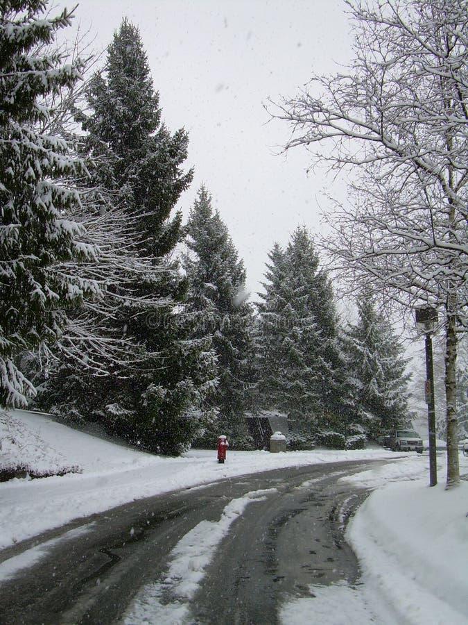 Nieve en Simon Fraser foto de archivo