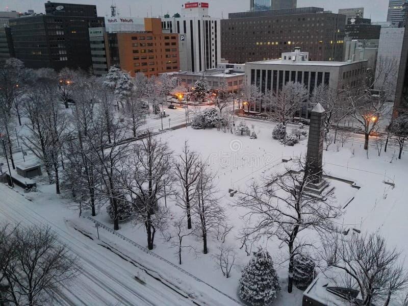 Nieve por la mañana en Supporo Hokkaido fotos de archivo libres de regalías