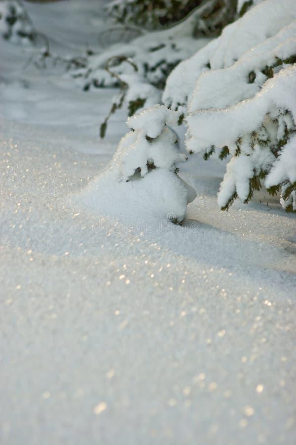 Nieve que brilla imagenes de archivo