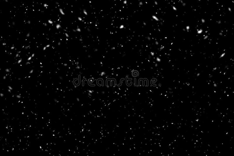 Nieve que cae en fondo negro Fondo del invierno en oscuridad pura Nevadas fuertes fotografía de archivo
