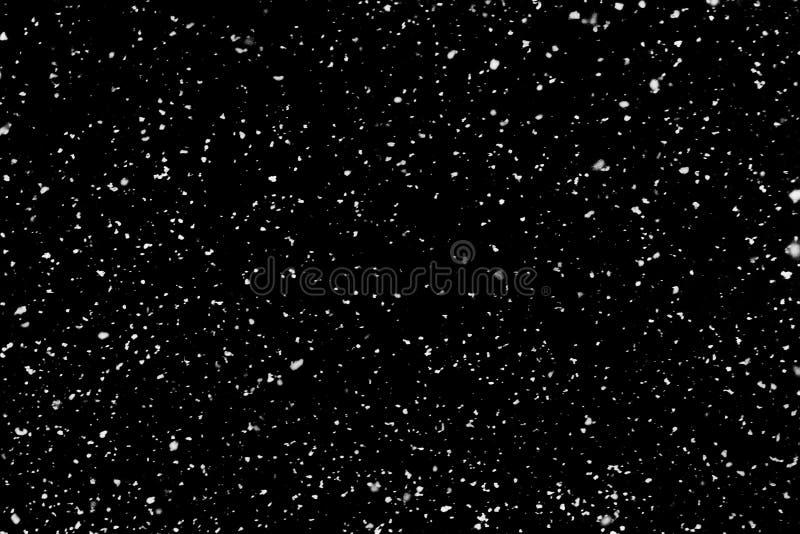 Nieve que cae real en el fondo negro para el uso como textura fotografía de archivo libre de regalías