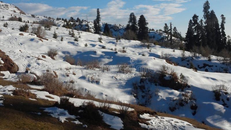 nieve que cubre la tierra imágenes de archivo libres de regalías