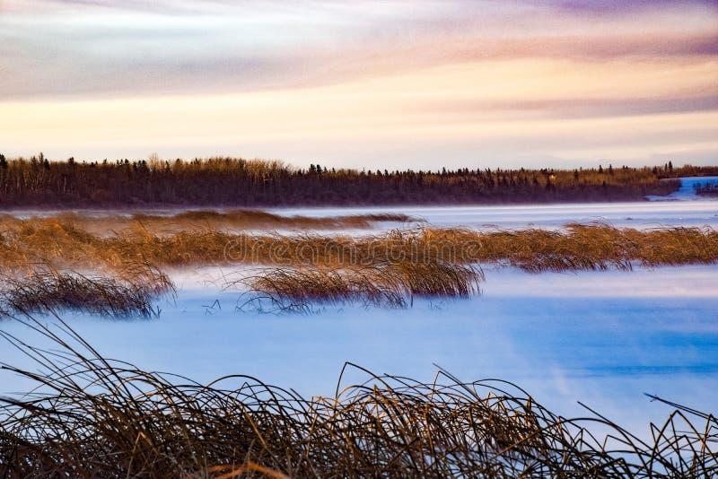Nieve que sopla en el lago imagen de archivo libre de regalías