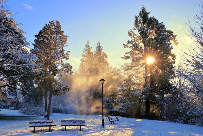Nieve que sopla en el país de las maravillas mágico del invierno a lo largo del parque del canal de la garganta, Victoria, B C fotografía de archivo
