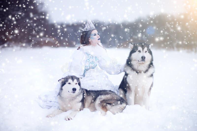 Nieve-reina Muchacha del cuento de hadas con los perros esquimales o el Malamute foto de archivo