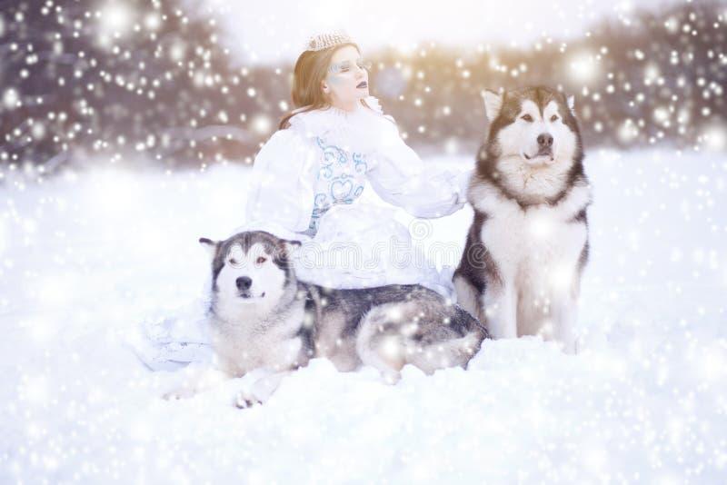 Nieve-reina Muchacha del cuento de hadas con los perros esquimales o el Malamute Perros hermosos del witn de la reina de la nieve imagenes de archivo