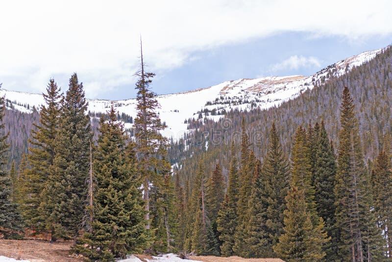Nieve temprana de la primavera en las montañas foto de archivo