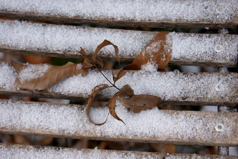 Nieve y hojas en la madera fotos de archivo