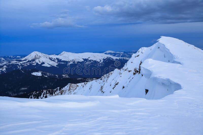 Niewiarygodna zimy scena z śniegiem zakrywał lasy, wysoka góra Zamarznięci płatki śniegu tworzyli ciekawić formy i pojemność obrazy royalty free