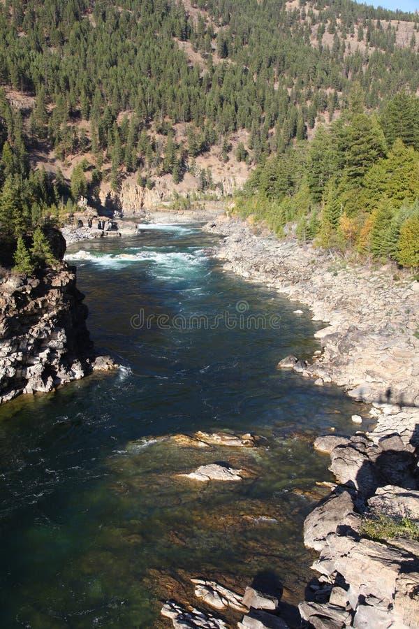 Niewygładzony widok Dzika Kootenai rzeka w górach Północno-zachodni Montana obrazy royalty free