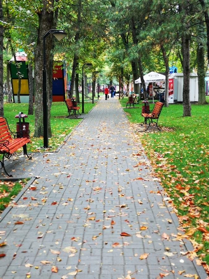 Niezłe miejsce na odpoczynek w parku zdjęcia stock