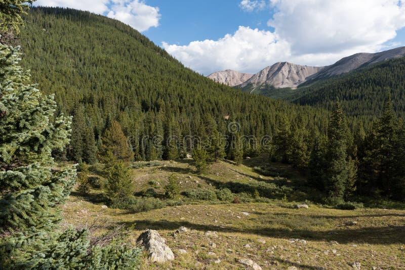 Niezależności góra 12.703 cieki w odległości nad drzewo zakrywał góry obrazy stock