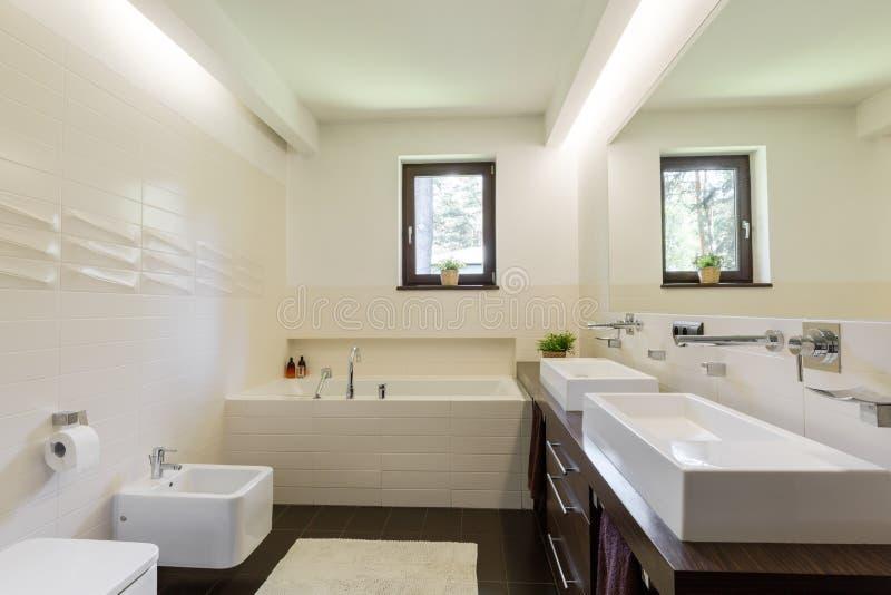 Niezwykła ściana tafluje sumującego charakteru bathroom& x27; s wnętrze obraz royalty free