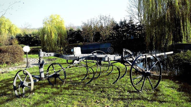 Niezwykła instalacja Piękno jest zawsze tam jasny dzień świeci słońce Dobra pogoda w wczesnej jesieni obraz royalty free