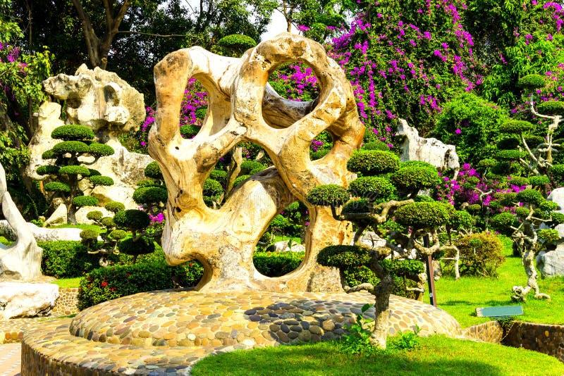 Niezwykli kamienie i drzewa w tropikalnym ogródzie o obrazy royalty free