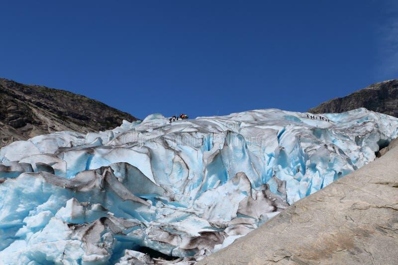 Nigardsbreen lodowiec w Norwegia w lecie fotografia stock